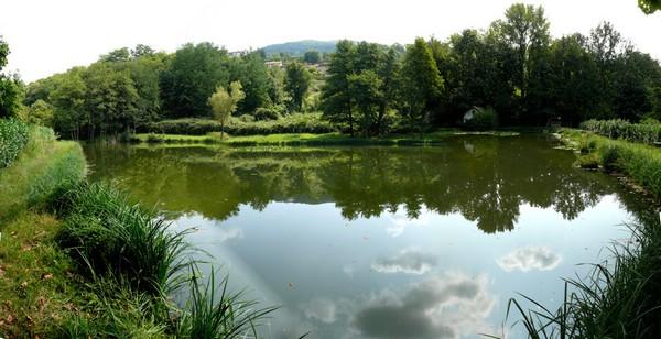 I laghetti di cogoredo e chiarella for Acqua verde laghetto